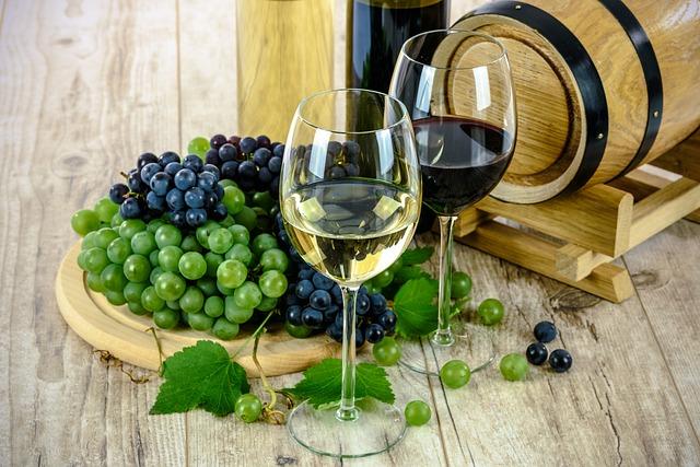 Produzione di vini Prosecco, Merlot, Chardonnay, Cabernet, ecc